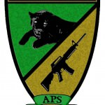 Airsoft_Panther_Soest_Logo